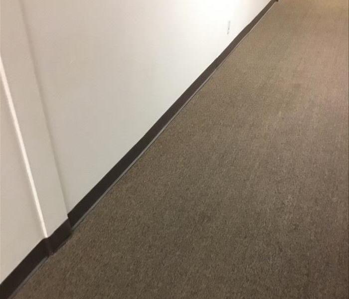 A Dry Carpet After