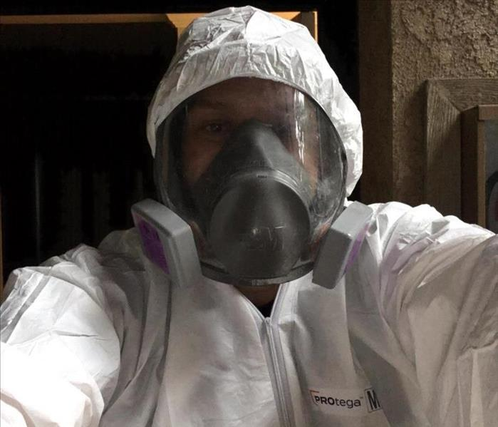 Mold Remediation Torrance Residents:  Follow These Mold Safety Tips If You Suspect Mold