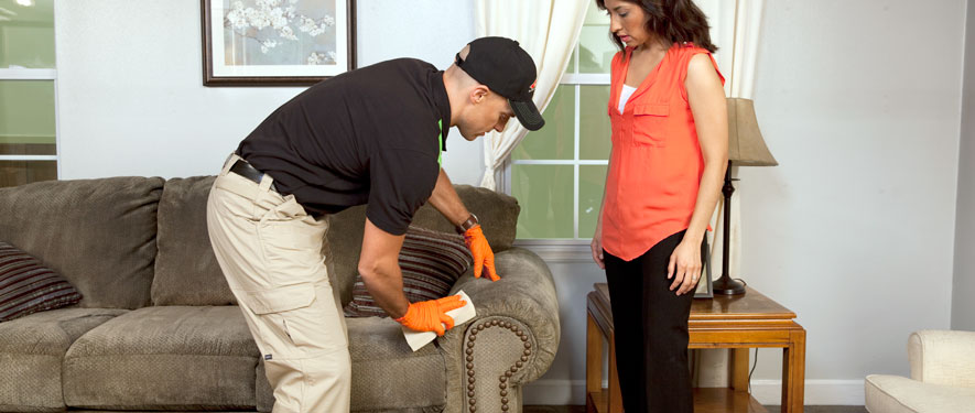 Torrance, CA carpet upholstery cleaning