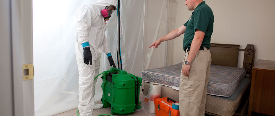Torrance, CA mold removal process